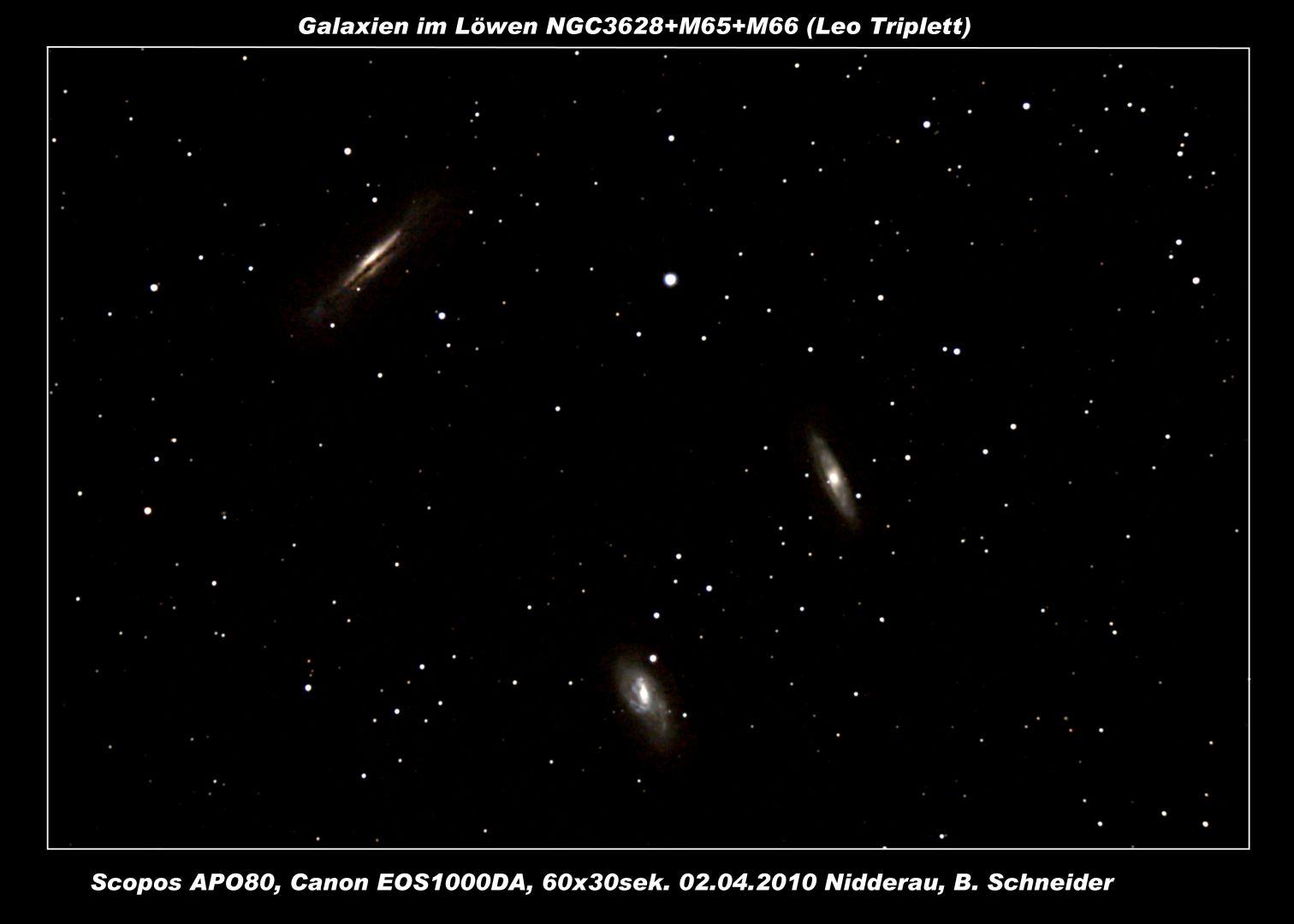 Leo Triplet 02.04.2010.jpg
