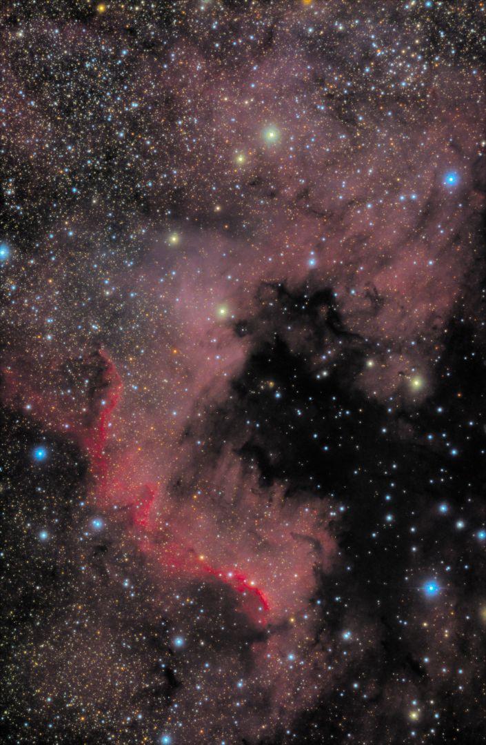 NGC7000 Nordamerikanebel