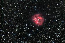 Kokonnebel IC 5146