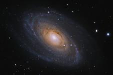 M81 C11