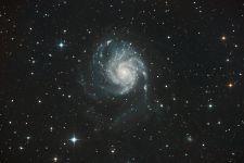 Pinwheel Galaxie_M101.jpg